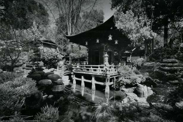 San Francisco Golden Gate Park Japanese Tea Garden. Kotani-ea Temple to Ben-Tea reflected in the koi pond. March 27, 1985
