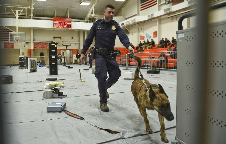 Customs and Border Protection officer J. Mills and his K9 Lola inspect random objects for concealed narcotics on Tuesday, May 16, 2017 as part of the 3rd Annual K9 Competition hosted by United ISD Police at the United High School 9th Grade Campus. Photo: Danny Zaragoza/Laredo Morning Times