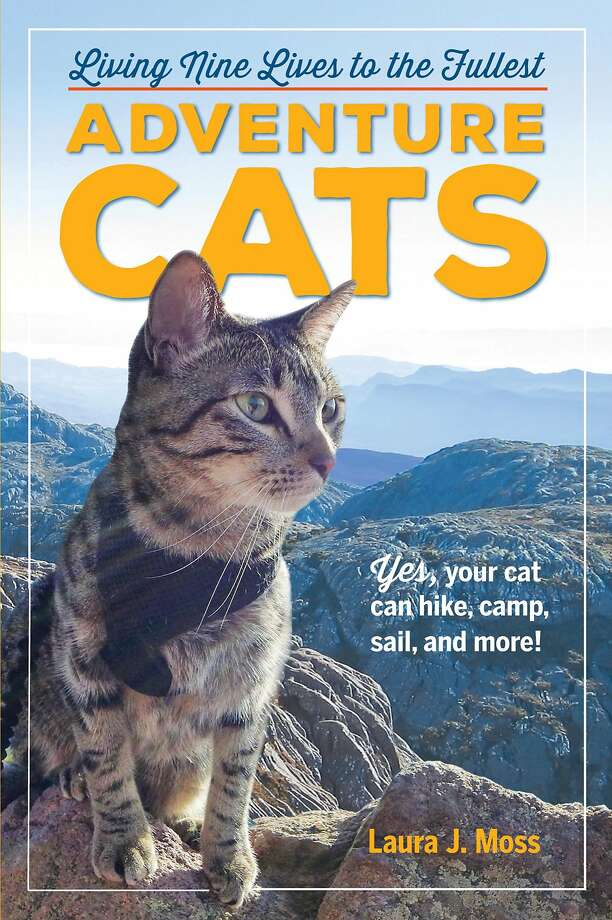 """Adventure Cats"" by Laura J. Moss (Workman Publishing) Photo: Photos Courtesy ""Adventure Cats"" By Laura J. Moss (Workman Publishing)"