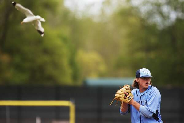 Northwood University's Ian Dimitrie pitches in a game against Drury at Northwood on Friday.