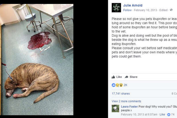 Facebook users are re-sharing photos of the effects of a dog consuming Ibuprofen as a warning to others to not give any medication to your pooch without consulting a veterinarian first. Source:  Facebook
