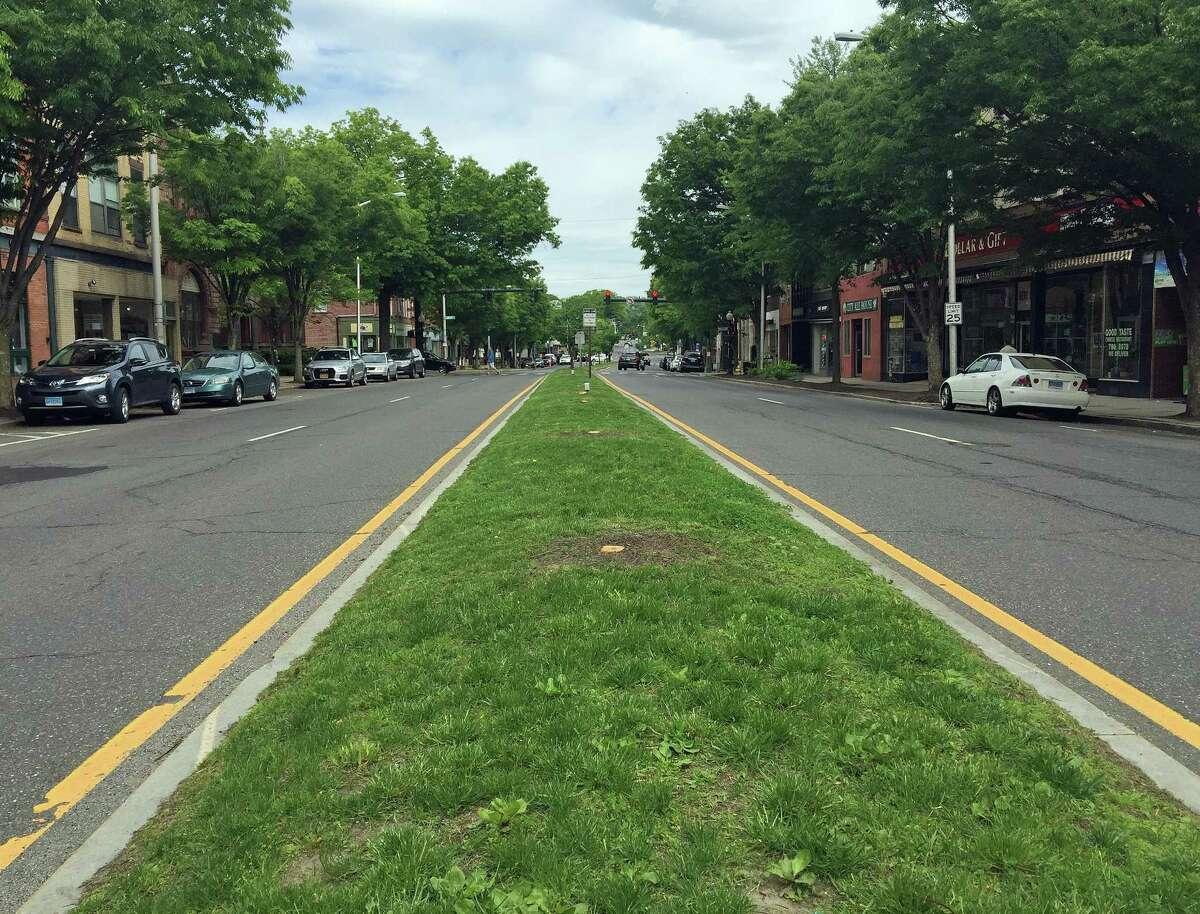 "The Main Street median in Danbury, where 24 ""dead"" cherry trees were cut down."