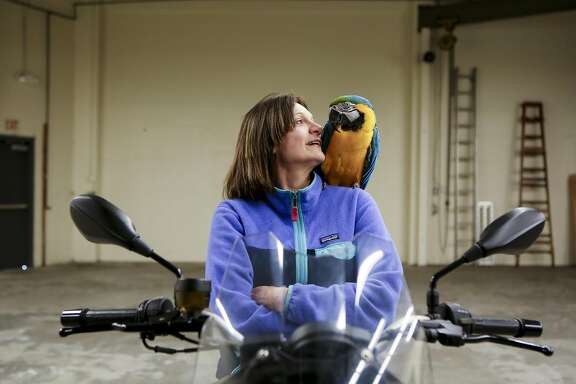 San Francisco Bird Hotel owner Birgit Soyka poses for a portrait with Diamond on top of her motorcycle in the warehouse of the bird hotel in South San Francisco, Calif. on Wednesday May 17, 2017. Soyka fell in love with birds because they represented the same feeling of freedom she felt while racing motorcycles in Germany and southern California.