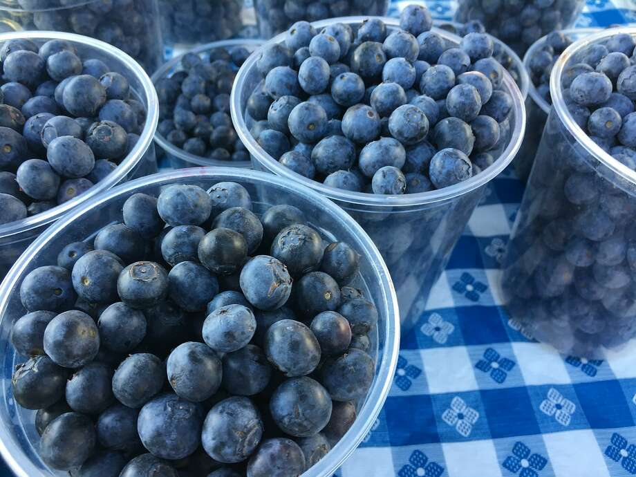 Blueberries from Triple Delight Blueberries' stall at the Ferry Plaza Farmers Market. Photo: Sarah Fritsche