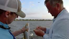 Guide Scott Hibbetts (left) and Corpus Christi angler Kevin Hagadorn unhook a nice spotted sea trout caught during an early morning, very windy trip near Bluff Landing Marina.
