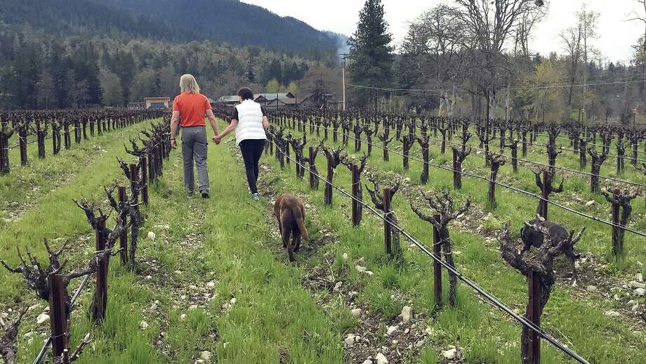 Bill and Barbara Steele walk through their vineyard outside Jacksonville, Ore. The legalization of recreational marijuana has opened the door for explosive growth in this fertile region. Photo: Gillian Flaccus, Associated Press