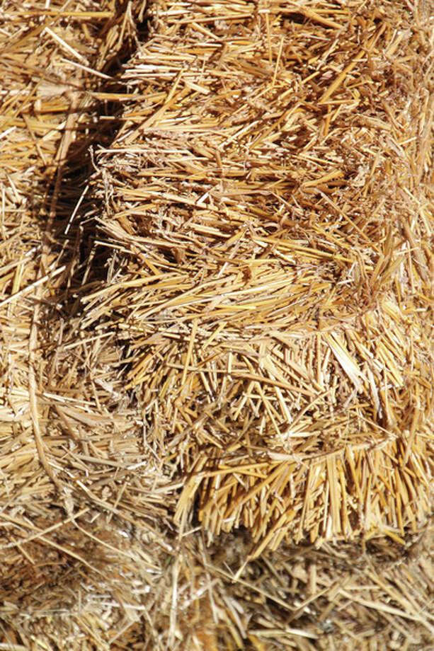 People  have been using their imaginations and have started using straw bales  for their vegetable garden containers.