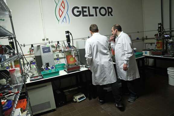 Geltor's Co-Founder and CEO Alexander Lorestani (right) and Co-Founder and CTO Nick Ouzounov in San Leandro, Calif., on Wednesday, May 24, 2017.