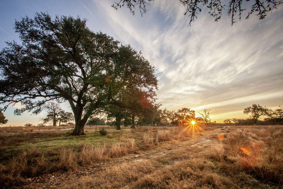 The Grove is the first neighborhood in Vintage Oaks to offer properties under 1 acre with homes from three award-winning builders. / Jim Flynn