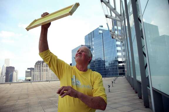 Left: Bill Whitney of City Bee Savers uses the sunlight to inspect a comb before installing  a hive.