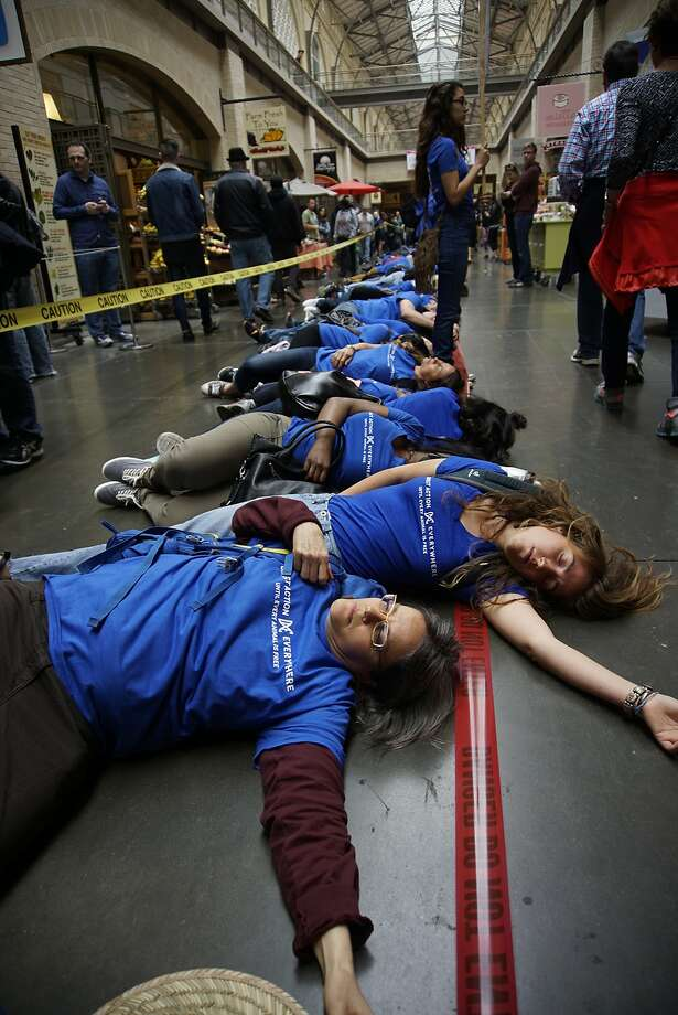"""FILE -- Anita Krajnc (foreground) lay with 350 people of Direct Action Everywhere, spanning the full length of the Ferry Building, in what they describe as a """"die-in"""" on Sunday, May 28 2017 in San Francisco, CA. The group appeared at an East Bay barbecue festival and disrupted the event. Photo: Carson Au / Special To The Chronicle"""