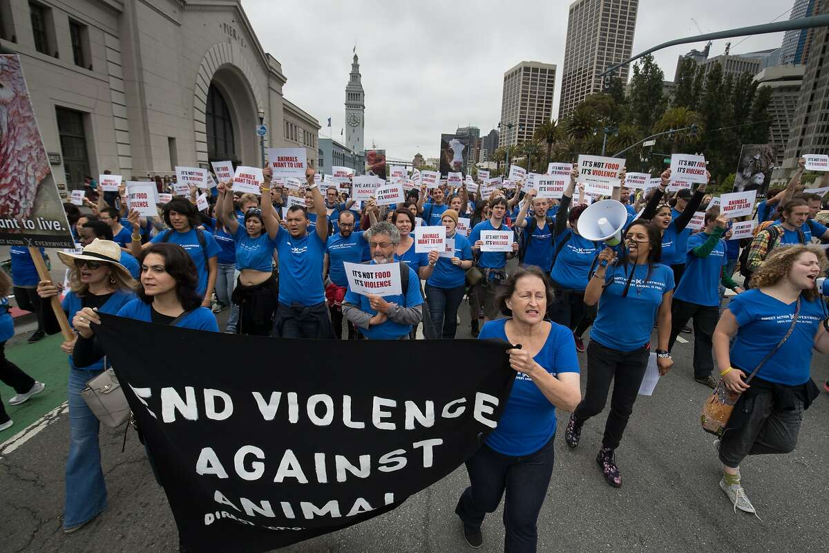About 350 Direct Action Everywhere marchers went to Pier 39 on The Embarcadero from the Ferry Building on Sunday, May 28 2017, in San Francisco, CA.