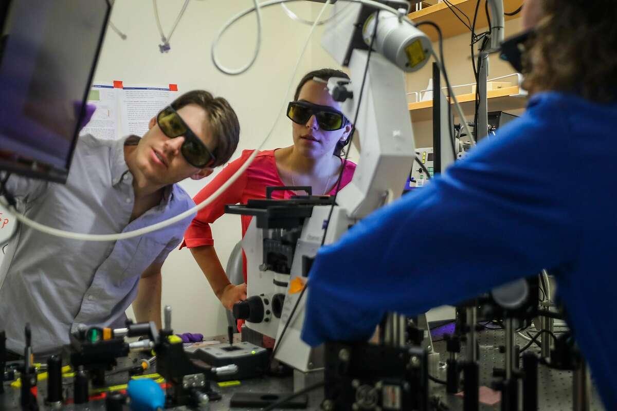 Physics post docs Travis DelBonis O'Donnell (left), Markita Landry (center) and Ian McFarlane work in Landry's lab at UC Berkeley.