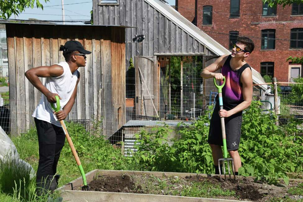 Albany High student Jaden Gary, left, and UAlbany senior Peter-John Ferrebee turn the soil in vegetable beds at Radix Eco. Sustainability Center Wednesday May 17, 2017 in Albany, NY. (John Carl D'Annibale / Times Union)
