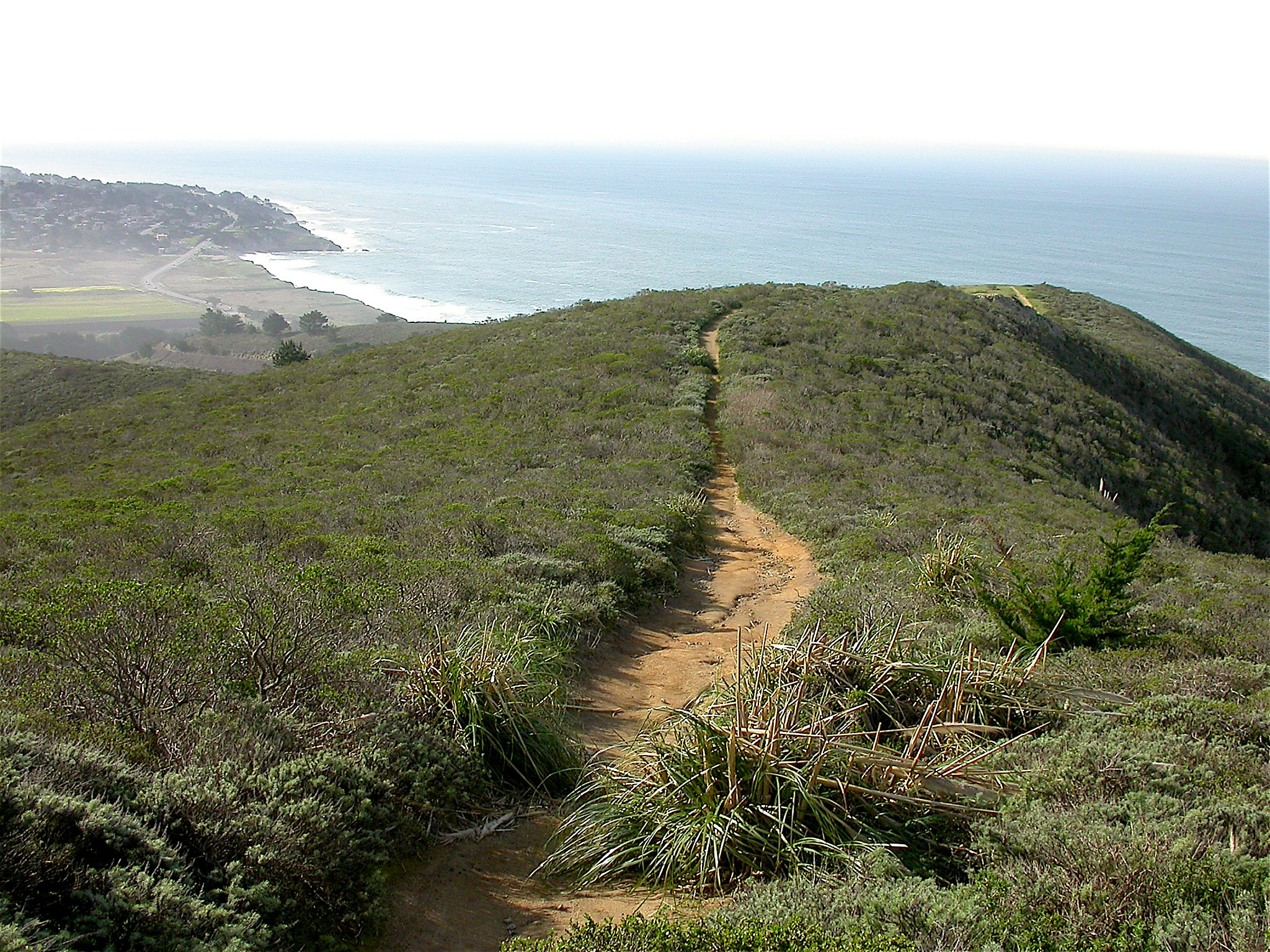 Sunday Getaway Gray Whale Cove A Hidden Natural Gem