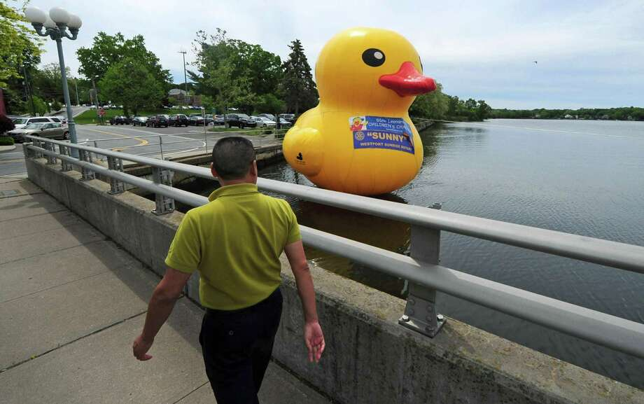 A pedestrian walks by the large inflatable rubber duckie moored in the Saugatuck River on May 23, announcing The Great Duck Race scheduled for June 3 in Westport. Photo: Erik Trautmann / Hearst Connecticut Media / Norwalk Hour