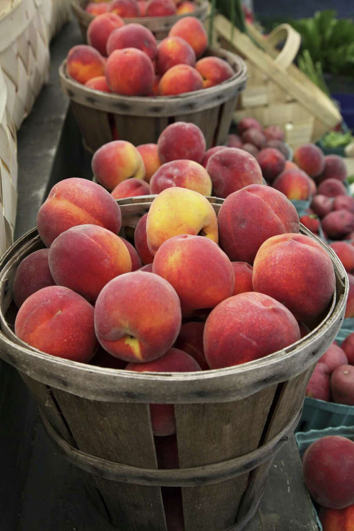 Corpus Christi farmers market in downtown 100 N. Shoreline Blvd, Wednesdays 5pm to 8pm