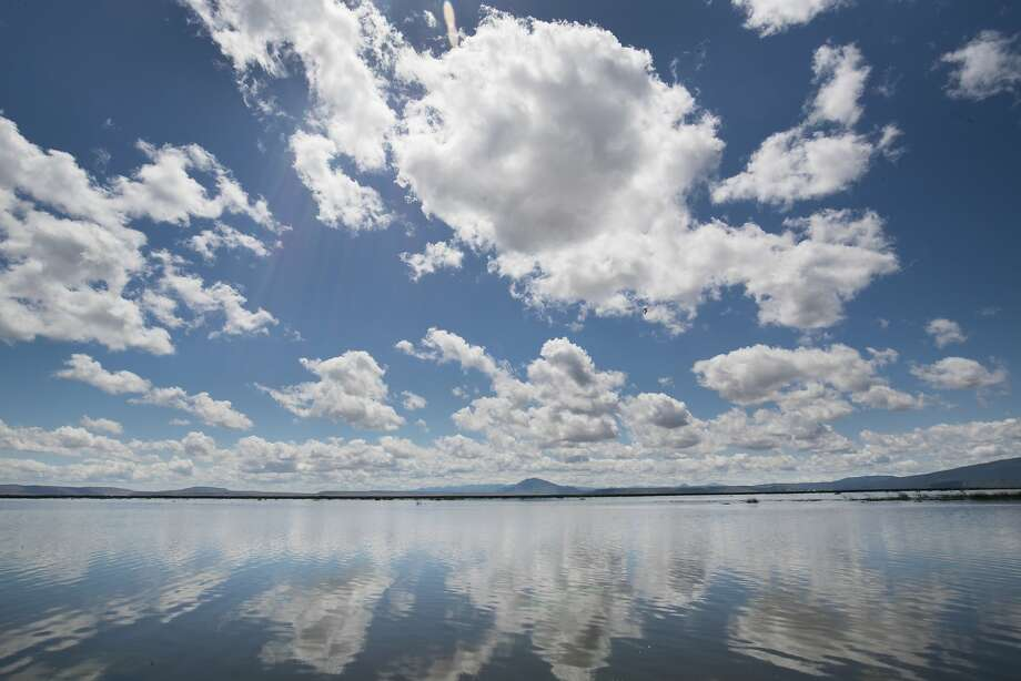 Clouds reflect on the water surface of the Lower Klamath National Wildlife Refuge, Thursday, June 1 2017 in Siskiyou County, CA. Photo: Paul Kuroda, Special To The Chronicle