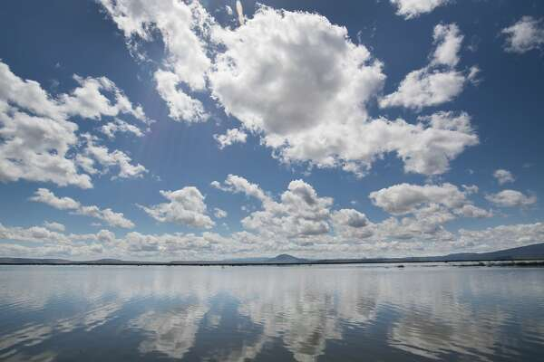 louds reflect on the water surface of the Lower Klamath National Wildlife Refuge, Thursday, June 1 2017 in Siskiyou County, CA.  Lower Klamath National Wildlife Refuge, established by President Theodore Roosevelt in 1908, was the first waterfowl refuge in the United States. It is located in the Klamath Basin near Klamath Falls, Oregon. It has a total area of 50,912.68 acres (206.04 km2), of which 44,294.55 acres (179.25 km2) are in California and 6,618.13 acres (26.78 km2) are in Oregon. The refuge includes shallow freshwater marshes, open water, grassy uplands, and croplands that are intensively managed to provide foraging and breeding habitat for waterfowl and other animals. The market hunting of migratory birds in the late 19th century created the need for preservation and creation of a wildlife refuge.