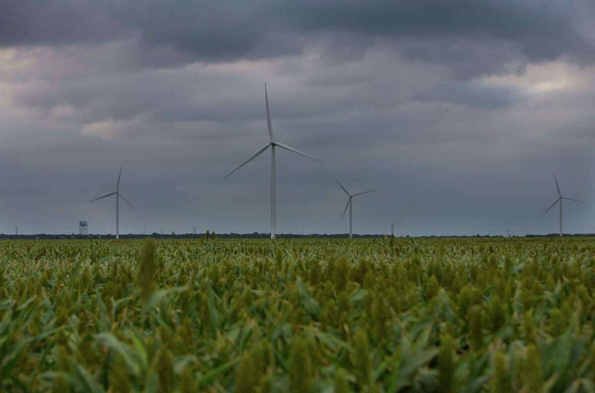 Wind turbines that are part of the Papalote Creek Wind Farm turn near Taft, TX above a field of sorghum, Tuesday, May 16, 2017, in San Patricio County.