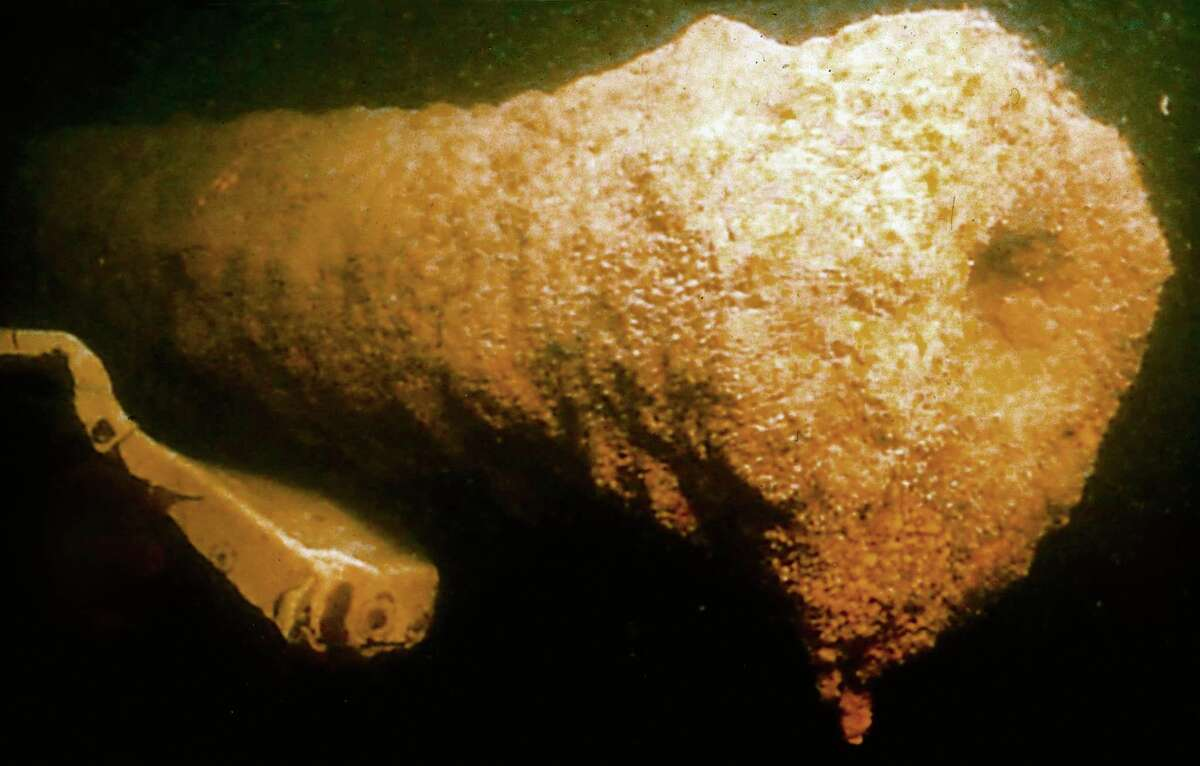 This image from a remote camera provided by the Lake Champlain Maritime Museum shows a cannon, believed to be from the Revolutionary War gunboat