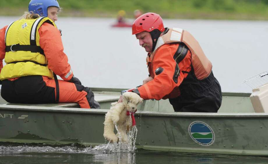 Chris Warriner, left, the Yates County community animal response team leader, operates the boat as Mark Burger, the Onondaga County community animal response team leader lifts a stuffed bear out of the water during the first statewide Disaster Response Bootcamp for companion animal water rescue training at LawsonOs Lake on Sunday, June 4, 2017, in Feura Bush, N.Y.  On Sunday attendees worked on rescue techniques using stuffed animals to represent the animals being saved. The three days of training worked with emergency responders and community animal response teams to train them on rescue techniques for getting cats and dogs in a flood situation.  Sixty people from around the state attended the bootcamp.  On Friday those in attendance worked in a classroom and then on Saturday attendees learned boat navigation skills, the different types of boats and the fitting of gear.   (Paul Buckowski / Times Union) Photo: PAUL BUCKOWSKI / 40040670A