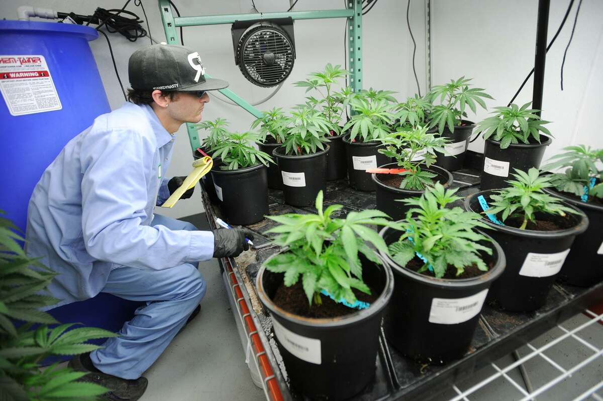 Medical marijuana was first approved during the 2012 legislative session. A bill to legalize sales to those over 21 died in committee, but House leaders said Monday that they might allow a brief debate on the issue, which is expected to fail. It faces tougher opposition in the Senate.