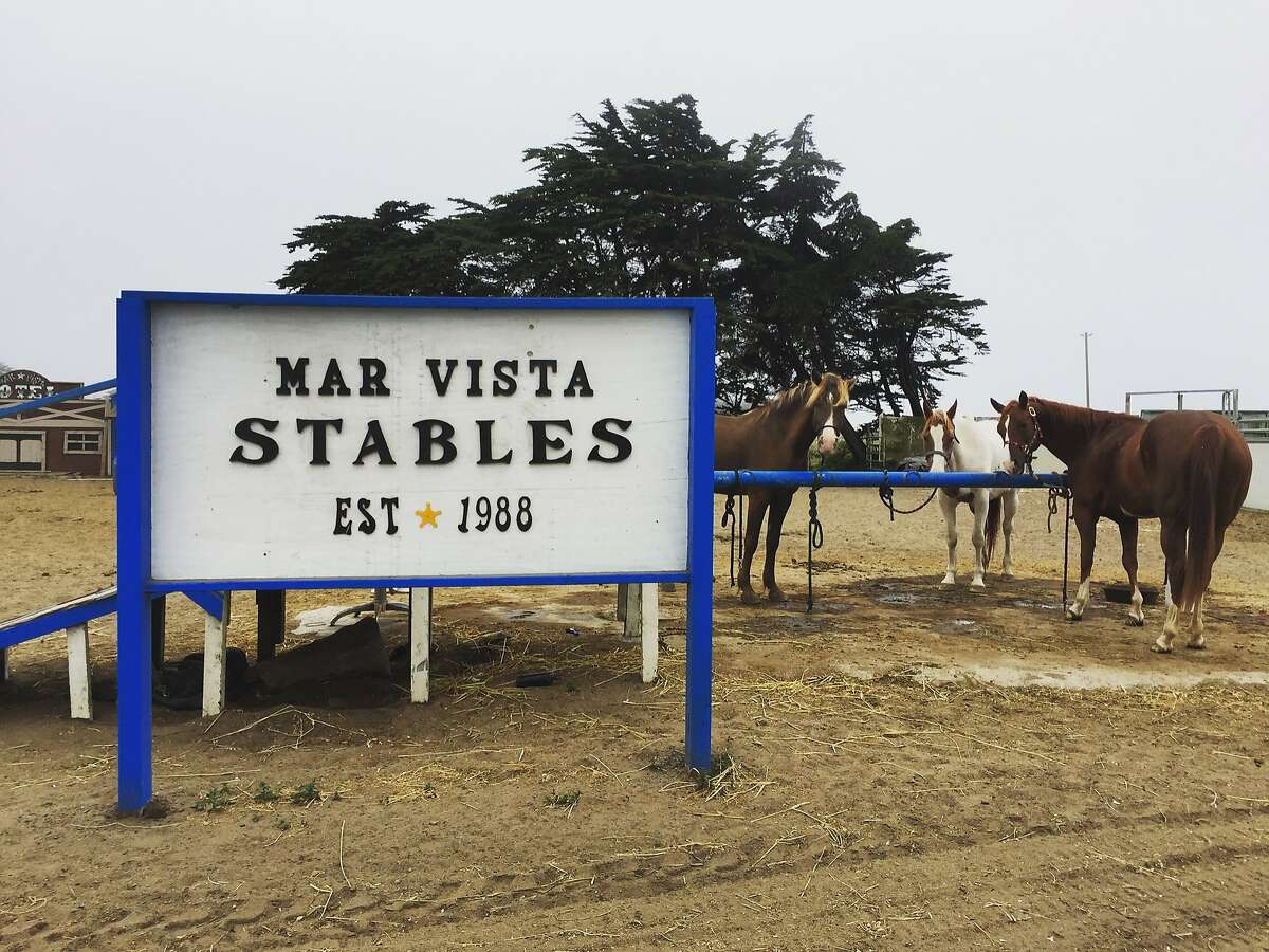 Mar Vista Stables in Daly City.