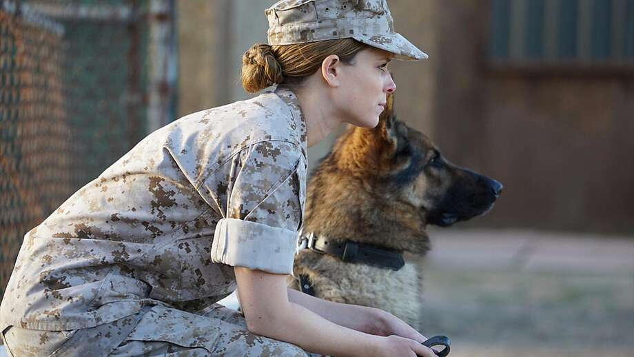 Kate Mara is a troubled soul transformed by the real love of a soldier dog. Photo: Bleecker Street Media