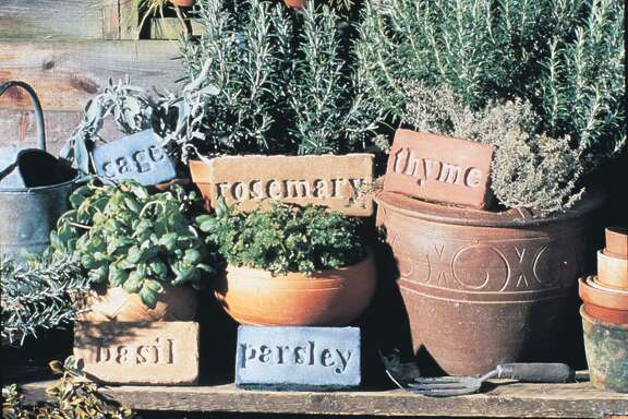 Herbs such as rosemary, thyme, parsley, sage and basil grow well in containers that can be moved indoors if the weather turns cold.