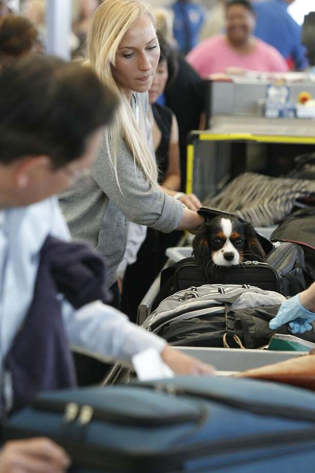 Since July, travelers at 10 airports have been removing electronics larger than cellphones, as part of the Transportation Security Administration's security enhancement plan. Now, the rest of the country will join them. Photo: Melissa Phillip, Houston Chronicle