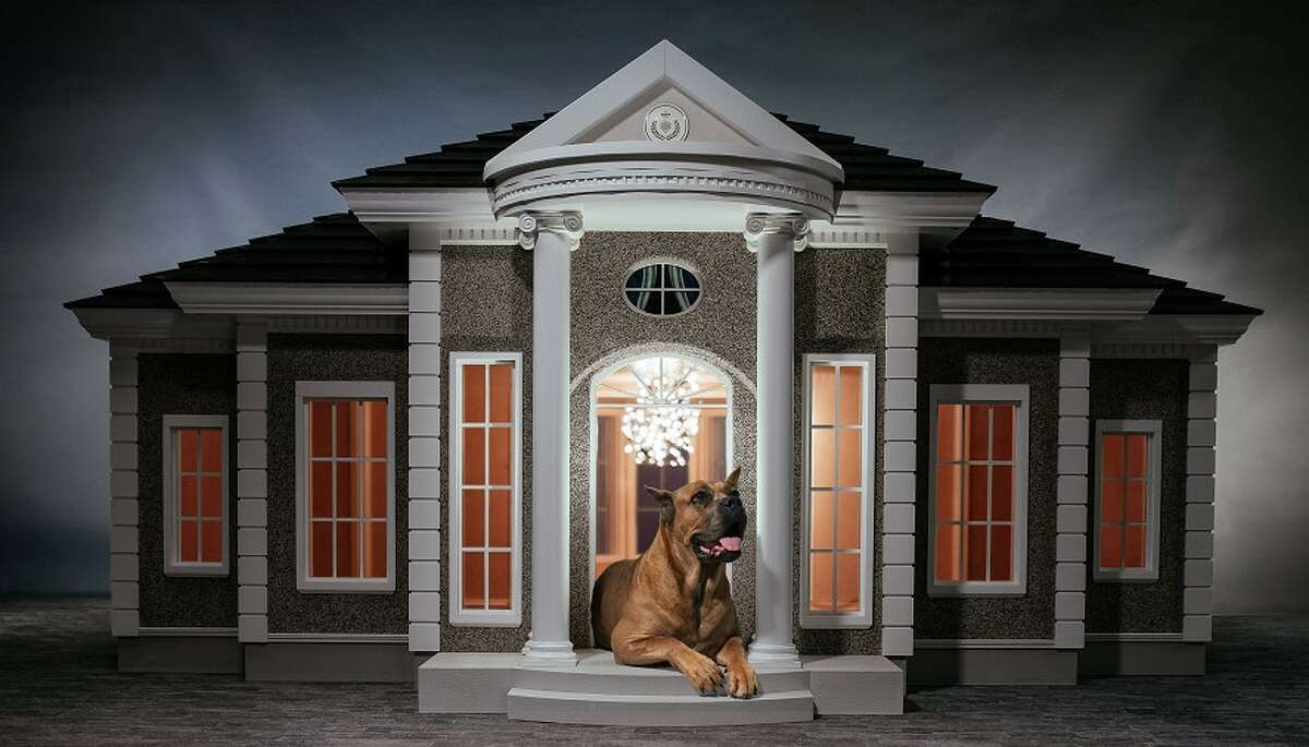 """British company Hecate Verona creates the """"world's most luxurious dog manors"""" and sells them all over the world. Some of the dog houses include air conditioning, cameras and TVs, among other amenities. Keep clicking to see some ways dogs are pampered."""