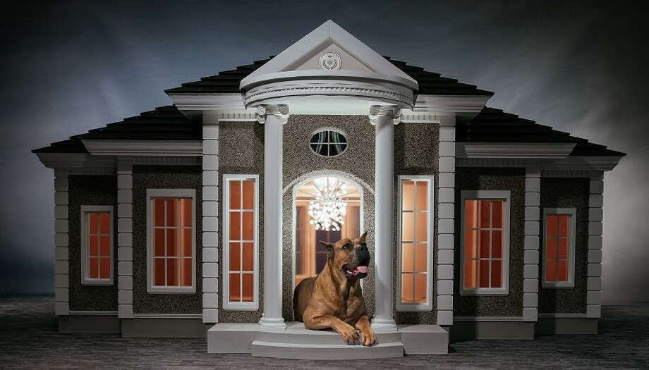 "British company Hecate Verona creates the ""world's most luxurious dog manors"" and sells them all over the world.Some of the dog houses include air conditioning, cameras and TVs, among other amenities.Keep clicking to see some ways dogs are pampered.  Photo: Hecate Verona"