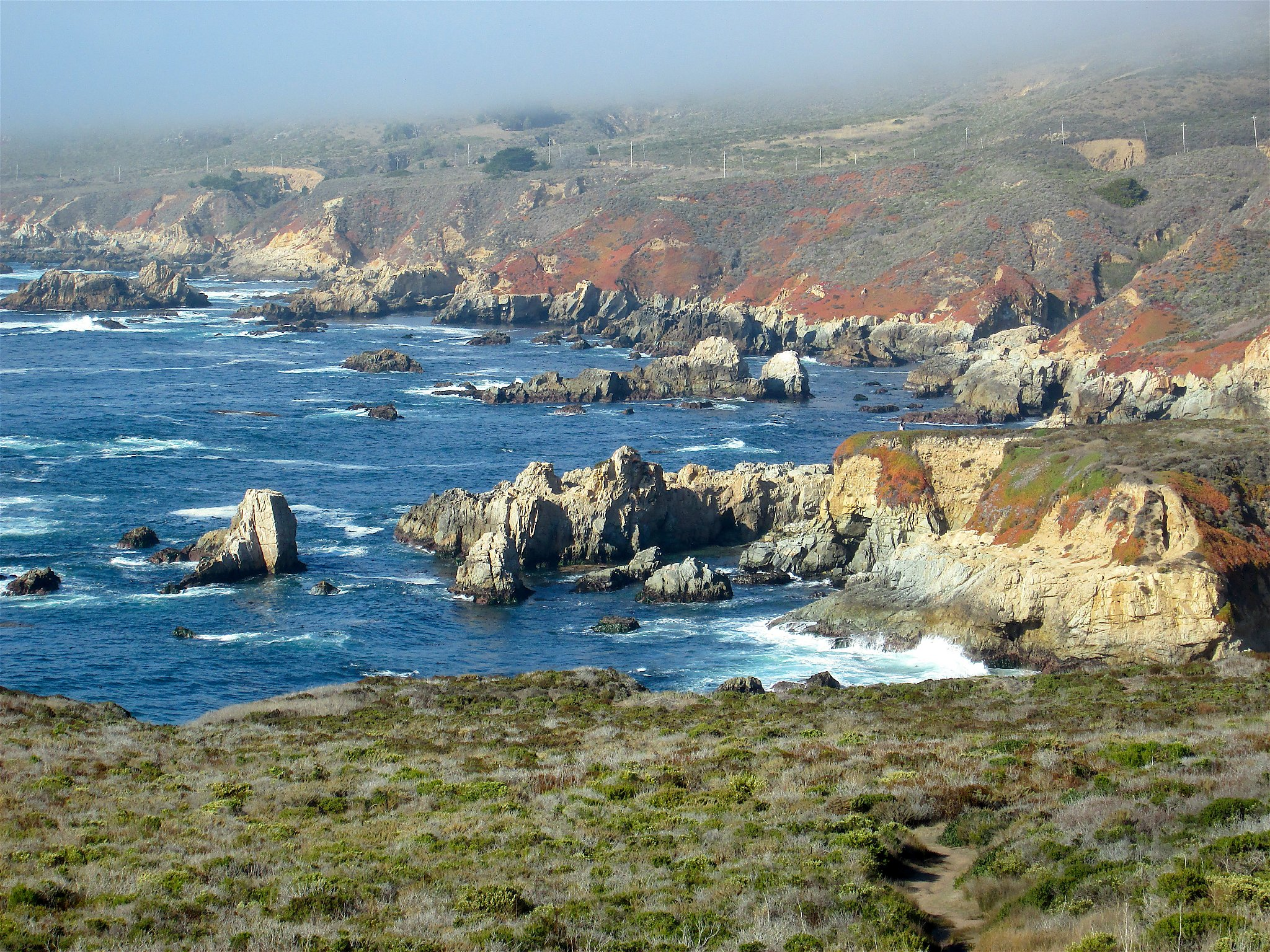 monterey county Browse through businesses for sale in monterey county, ca on bizbuysell find a business opportunity in monterey county to meet your needs, from absentee owner businesses to established high cash flow businesses.
