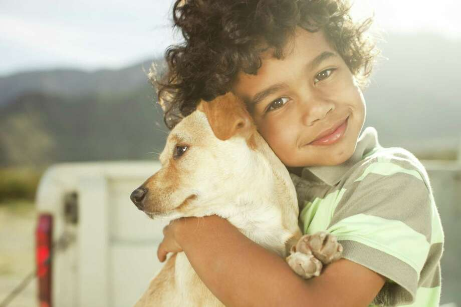 "If kids are still at the ""running, jumping and screeching"" stage, parents should wait until the kids settle down a little before bringing a pet into the home. Pets can be stressed by the antics of young children. Photo: LM Photo /Getty Images / LaCoppola Meier"