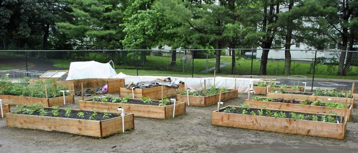 The new community garden at Danbury's Park Avenue School