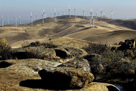 A wind farm on Monday Dec. 9, 2013, that sits on newly acquired property by the East Bay Regional Park District as seen from the Vasco Caves Regional Park, in the Altamont Pass near Livermore, Ca.  A decision by President Obama to allow wind energy companies to kill eagles and birds for thirty years could have a significant impact on the Bay Area, where one of the country's deadliest collection of wind turbines sits on the Altamont Pass.
