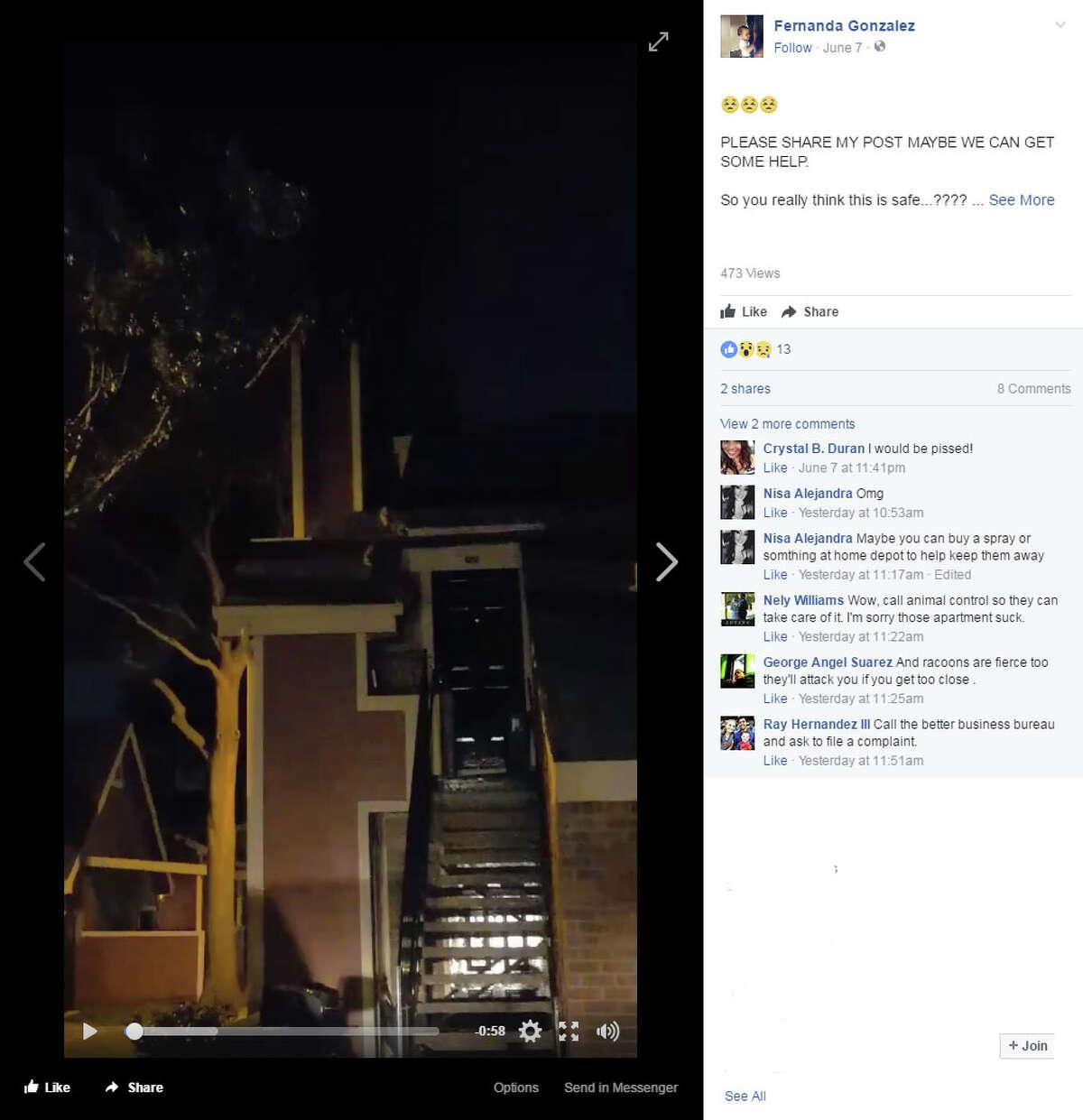 Fernanda Gonzalez, of Arlington, shared her tale of raccoon invasionvia Facebook.