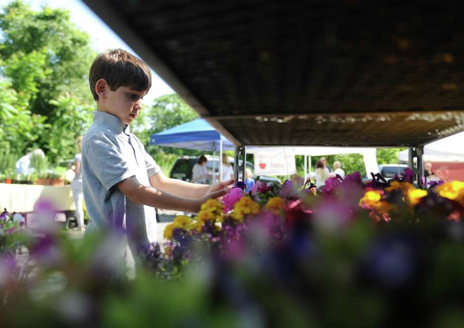 Riverside's Chase Eisenberg, 6, picks flowers from the Smith's Acres stand on the opening day of the Old Greenwich Farmers' Market at the Presbyterian Church of Old Greenwich. Photo: Tyler Sizemore / Hearst Connecticut Media / Greenwich Time