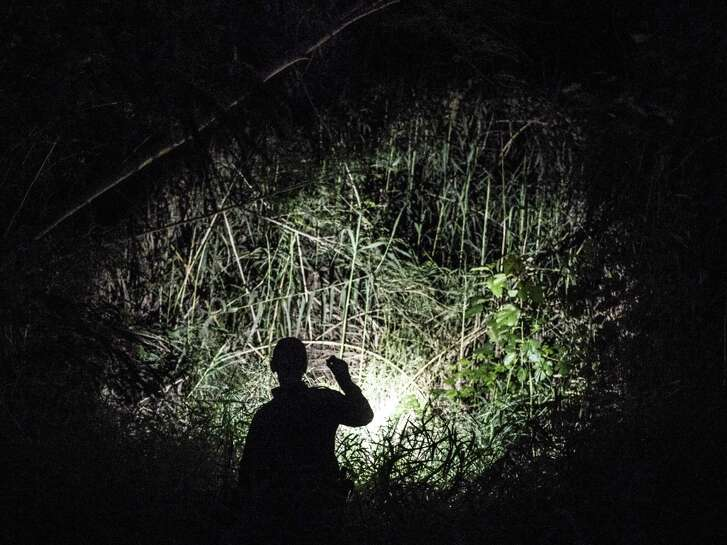 A Border Patrol agent searches for people who may be hiding in brush along the Rio Grande near Laredo.