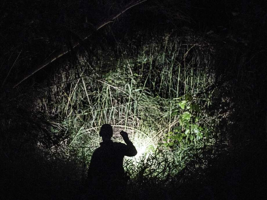 A Border Patrol agent searches for people who may be hiding in brush along the Rio Grande near Laredo. Photo: Matthew Busch /For The Washington Post / For The Washington Post