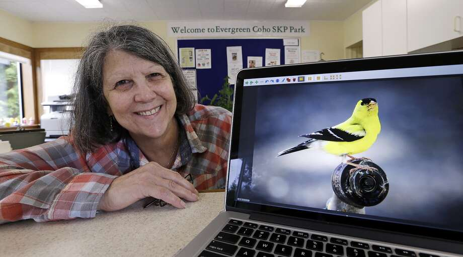 At her RV park office in Chimacum, Wash., Nancy Zingheim displays a photo of a goldfinch taken by Rita Poe. Photo: Elaine Thompson, Associated Press