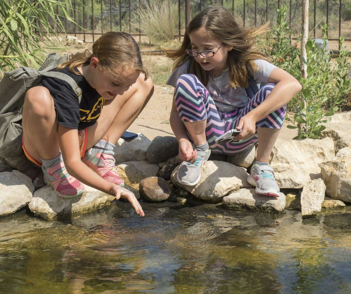 Gilly Landry and Emily Hinshaw try to catch the small fish in a pond 6/13/17 during Arthropod Adventures Camp at Sibley Nature Center. Tim Fischer/Reporter-Telegram