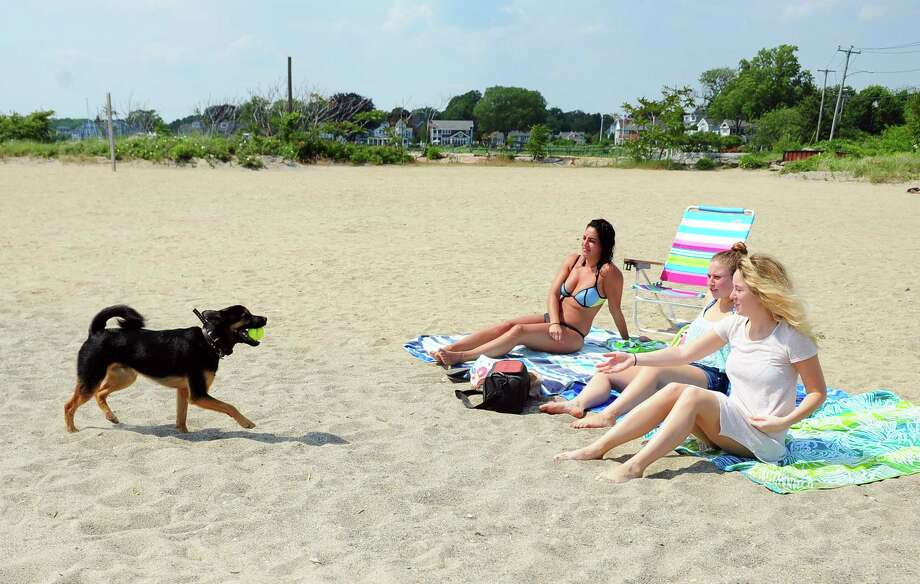 Meteorologists are predicting periods of sun, clouds and possibly a few  quick showers in some Connecticut towns Sunday, with the highest chances  of that in the western part of the state. Photo: Christian Abraham, Hearst Connecticut Media / Connecticut Post