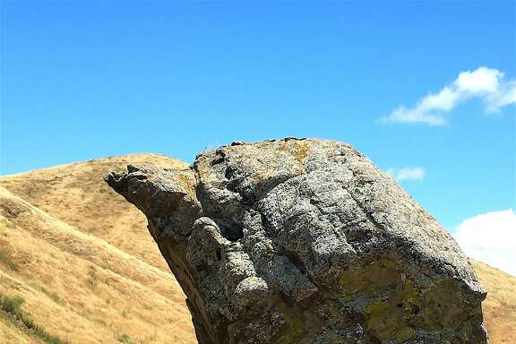 A rock formation, when viewed from the proper angle and when the sun hits it just right, looks like a bird head, located in Las Trampas Regional Wilderness near San Ramon
