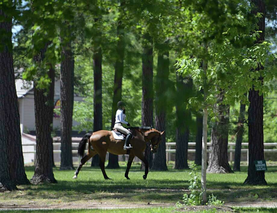 Samantha Masters, 17 of Tampa Florida rides through the trees of Claire Court at the Saratoga Race Course on the way to her next class at the Skidmore College Saratoga Classic Horse Show Wednesday June 14, 2017 in Saratoga Springs, N.Y.  (Skip Dickstein/Times Union) Photo: SKIP DICKSTEIN / 20040797A