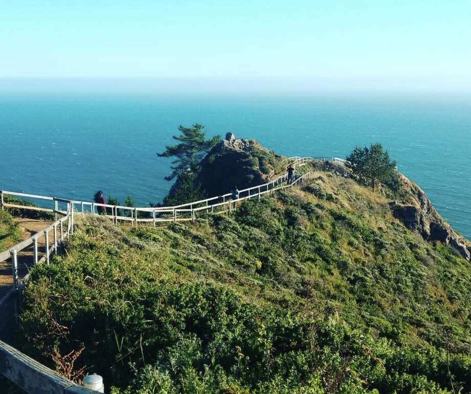 The hike along the Coastal Trail between Tennessee Valley and Muir Beach has stunning views of the Pacific Ocean. Photo: Courtesy Of Anuta_atuna/Instagram