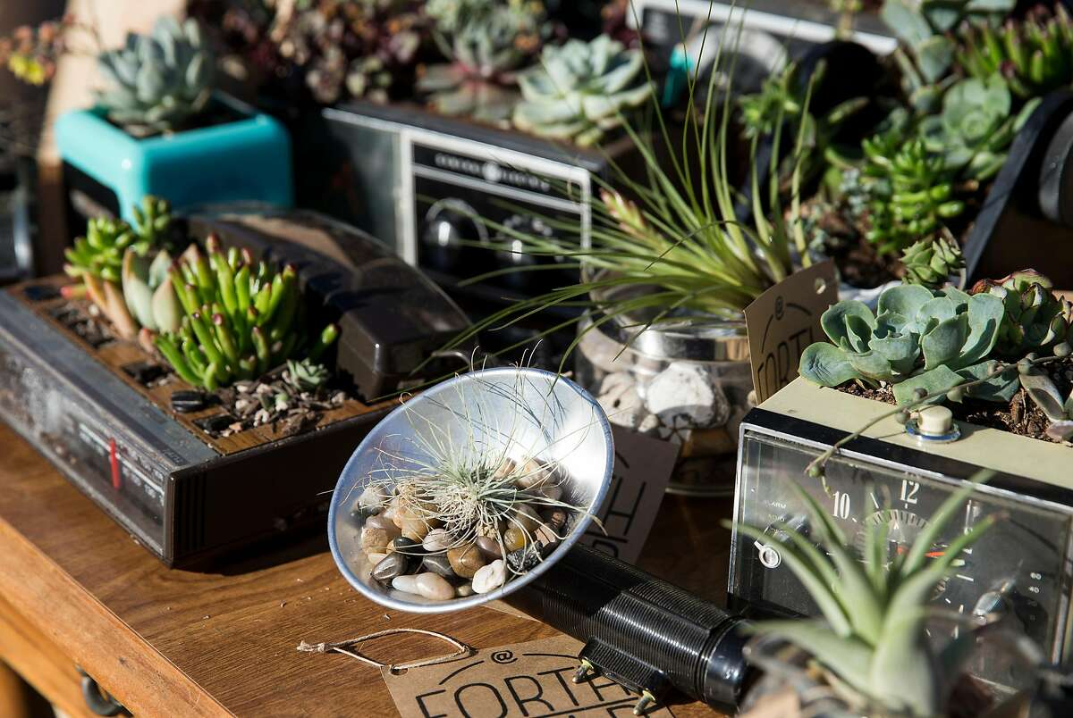 Products for sale by the vendor Forth World Planters are seen on display during the Oakland First Fridays street festival in Oakland, Calif., on Friday, June 2, 2017. They upcycle discarded products and turn them into sustainable planters for succulents. First Fridays is an art, music, food and community festival that takes place every first Friday of the month, weather permitting. Telegraph Avenue is closed to traffic between West Grand Avenue and 27th Street for the festivities.