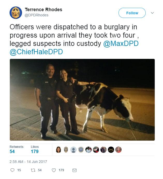 Police identify spotted suspects in strange 'burglary ...