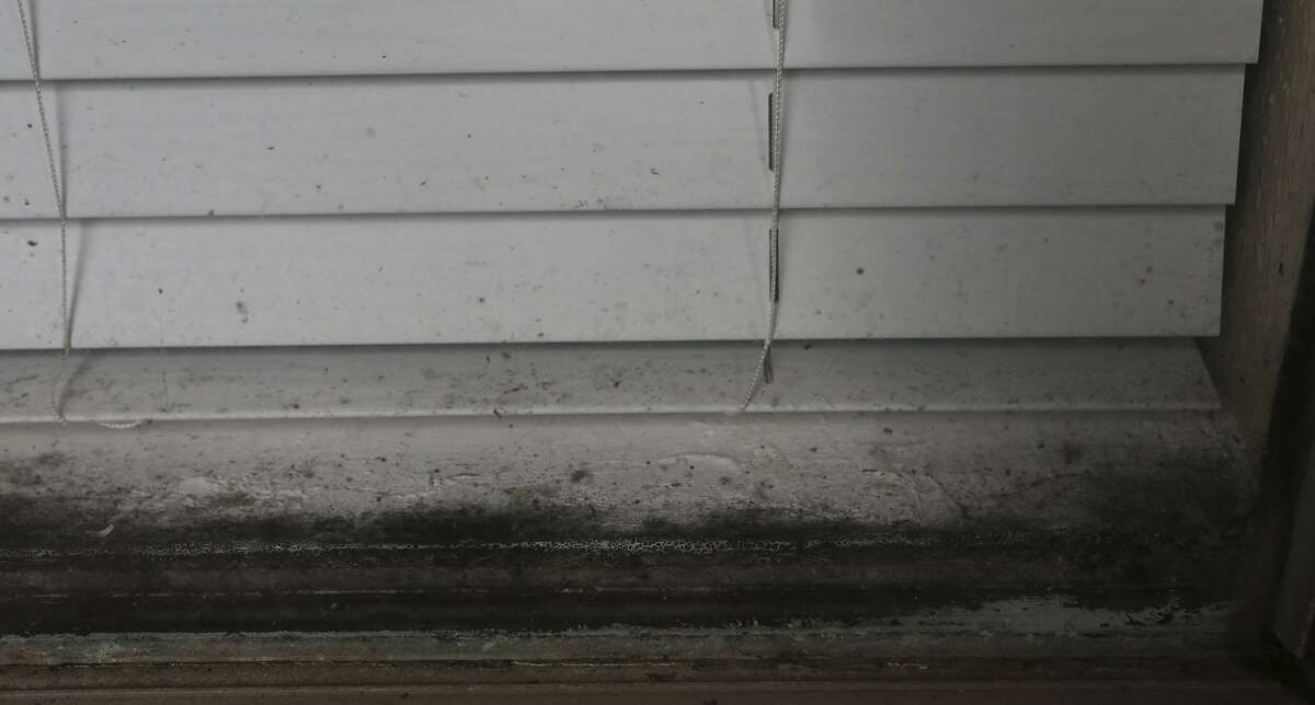 What appears to be mold grows in a window at the Avistar at Chase Hill apartment complex near Shops at La Cantera.